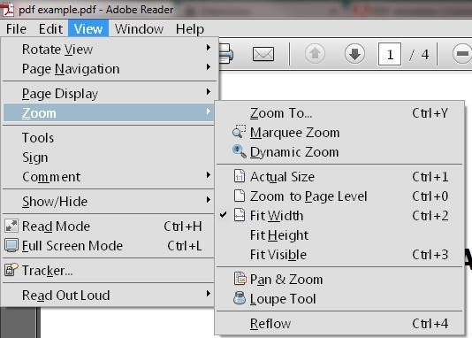 Zoom options from View menu